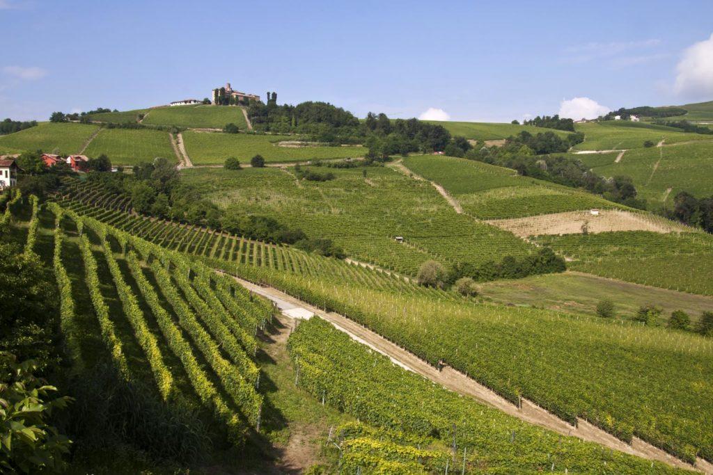 Langhe-1024x683 Agosto in città: 5 idee per trascorrere l'estate a Torino e dintorni