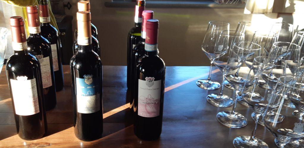 foto4-1024x498 Sulle strade del Dogliani, vino e cibo di qualità