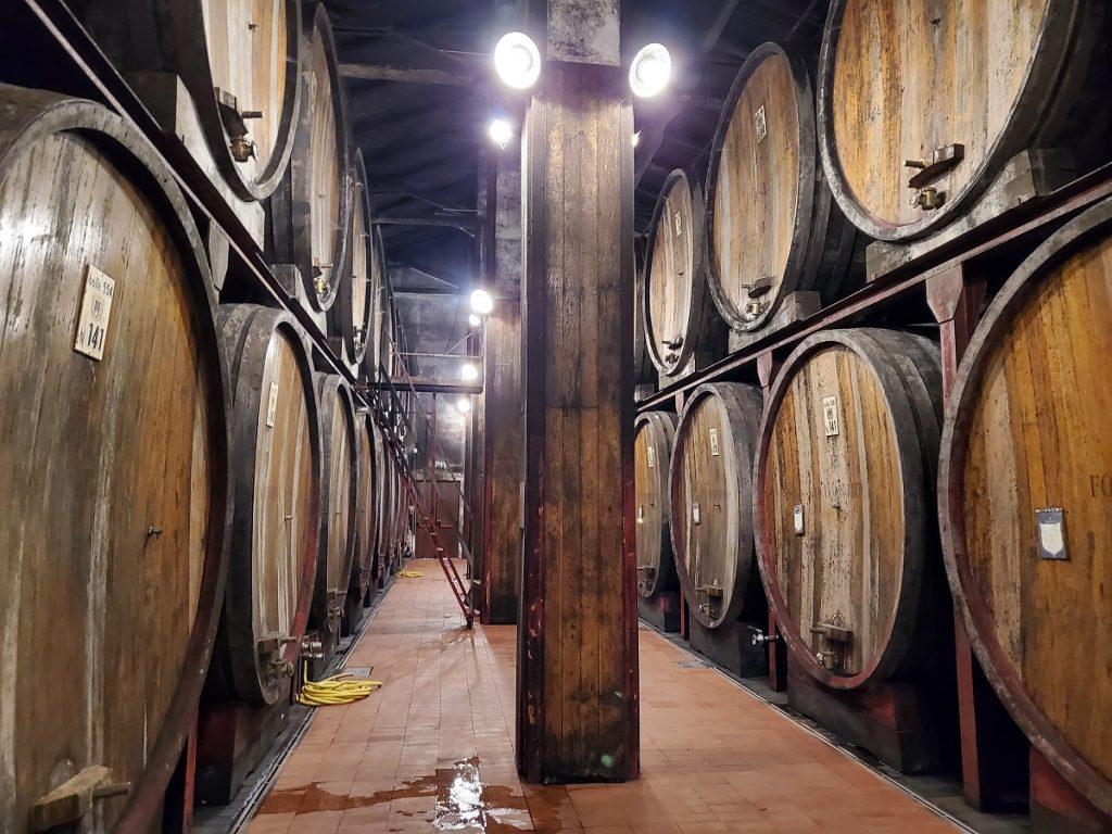Fontanafredda_botti_vino-1024x768 Viaggio nelle cantine di Fontanafredda, dove i grandi vini uniscono natura e cultura